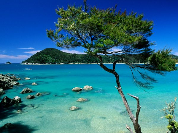 abel-tasman-national-park_9102_600x450