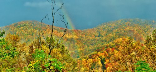 Every-color-of-the-rainbow-rainbow-and-autumn-at-the-Great-Smokies