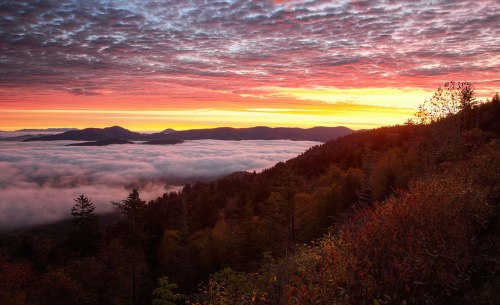 Pause-for-the-Sublime-in-the-Great-Smoky-Mountains