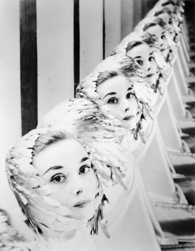 Audrey Hepburn portarait