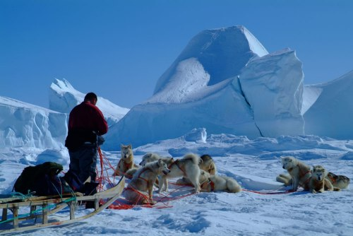 Icebergs-by-dog-sled