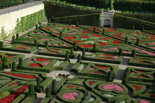 Chateau-Villandry-the-love-garden-geometric-garden-of-crosses-Maltese-Cross-Languedoc-cross-Basque-cross-Fleur-de-lis-lily-symbol