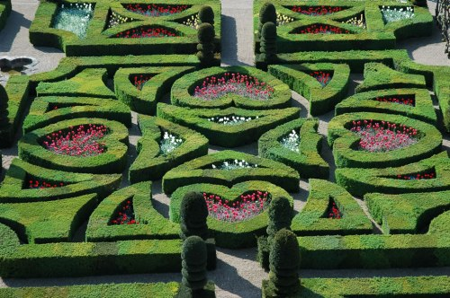 Renaissance-Tender-Love-gardens-of-Villandry