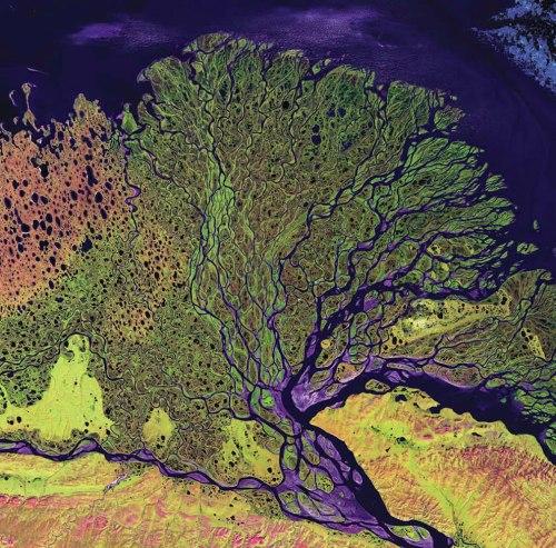 Lena-River-Delta-Russia