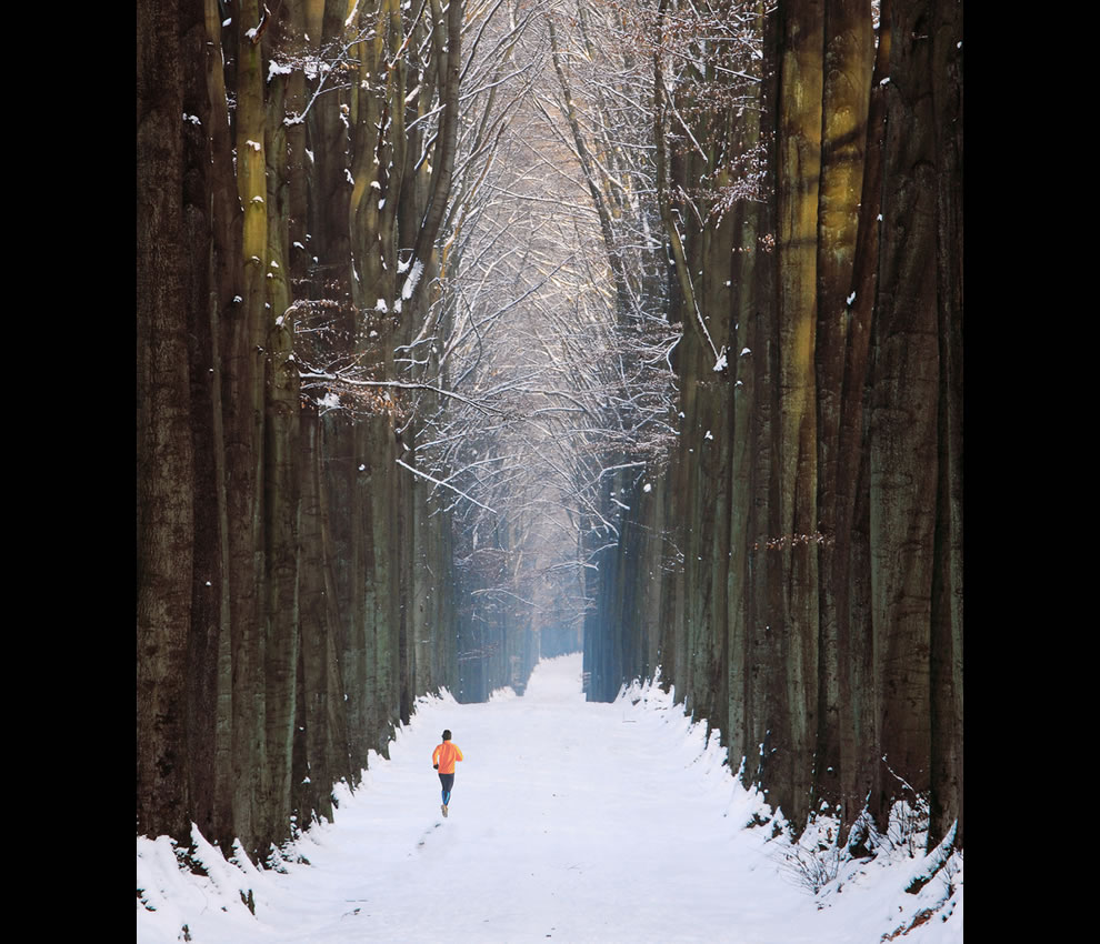 Post-Apocalypse-Running-in-the-Cathedral-Somewhere-in-the-Forêt-de-Soignes-close-to-Brussels-Belgium-on-a-snowy-afternoon1
