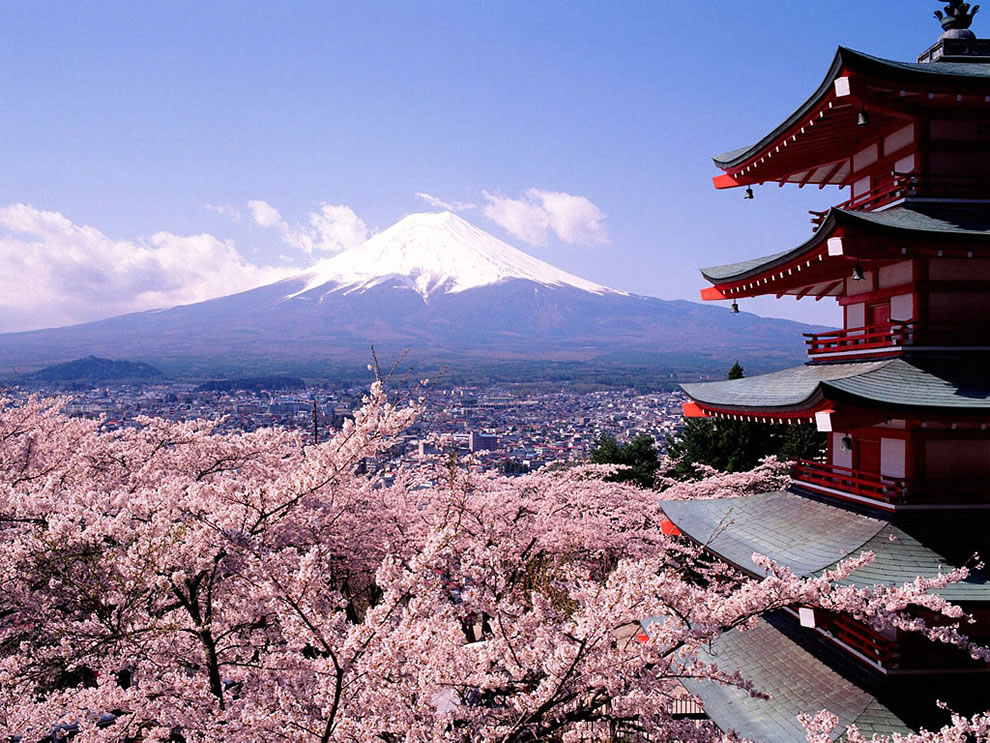 Mount-Fuji-cherry-blossoms-trees-and-pagoda-Tokyo-Japan
