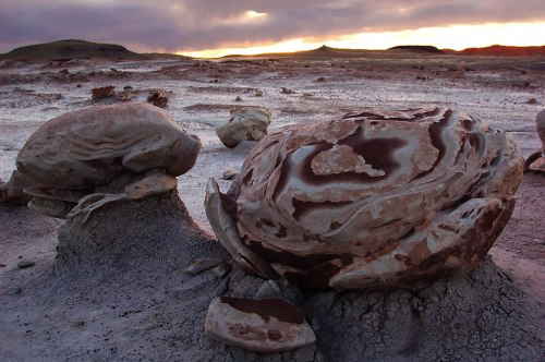Bisti-Egg-in-Bisti-Wilderness-New-Mexico