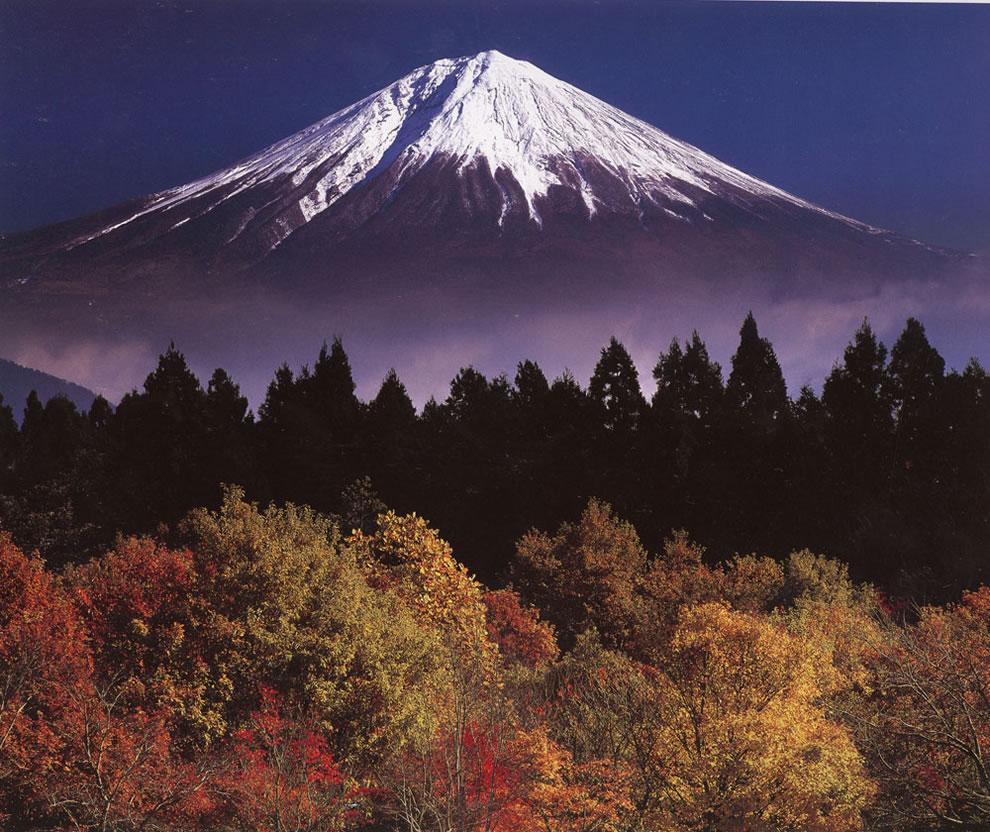 autumn-mount-fuji-in-the-fall