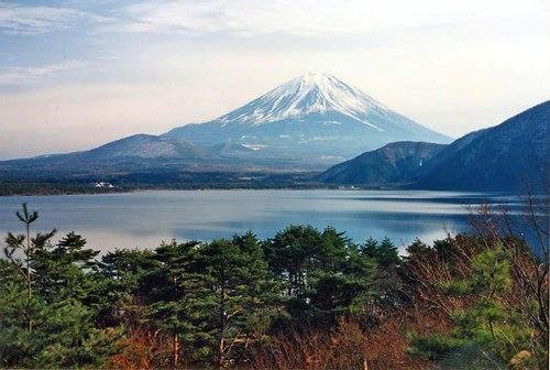fuji-five-lakes-area-of-lake-motosu-with-mount-fuji-in-the-background
