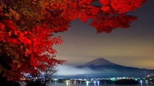 night-view-of-mt-fuji-with-fall-foilage-from-kanagawa-japan
